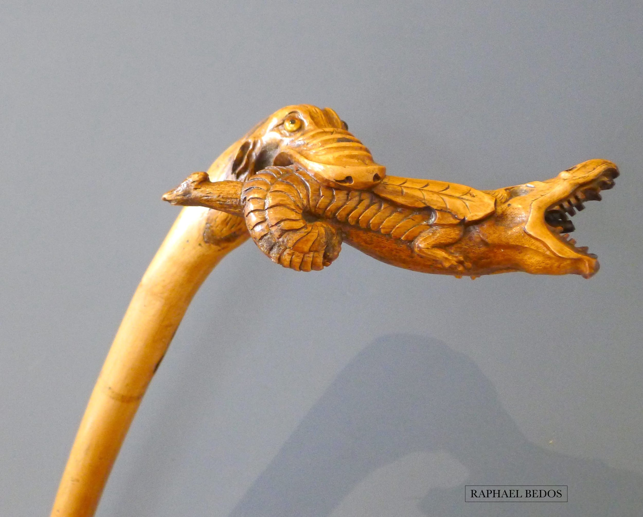 6.Canne à l'alligator