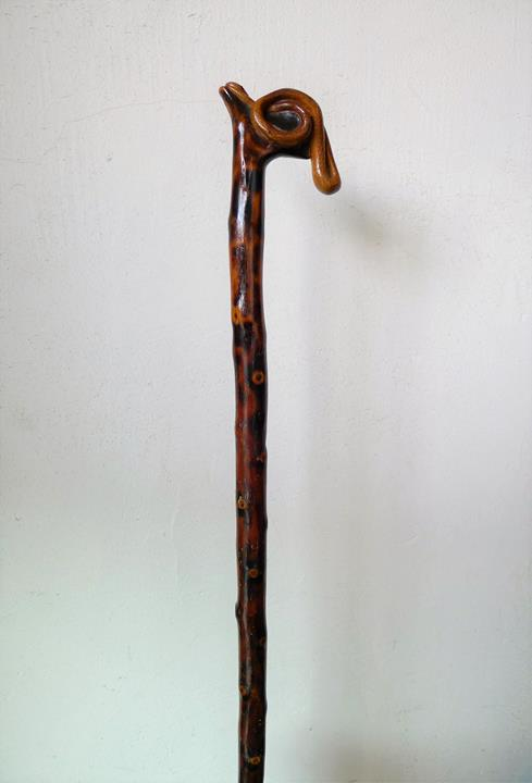 14/Canne sculptée d'un fin serpent monoxyle 19ème.