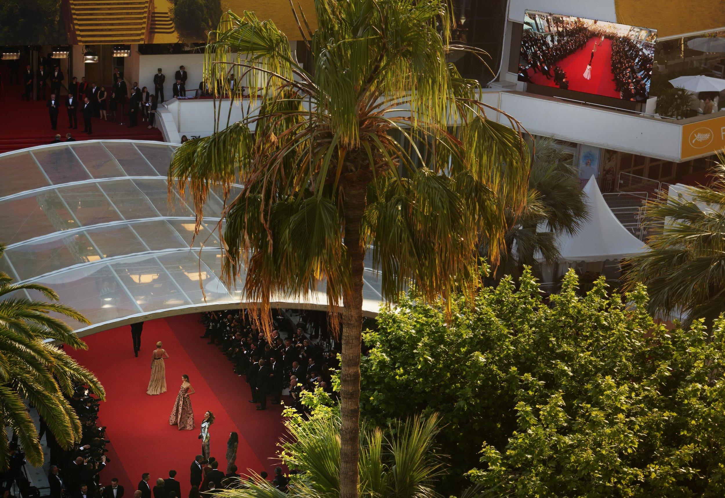 Cannes / George McLeod / Luxure Magazine