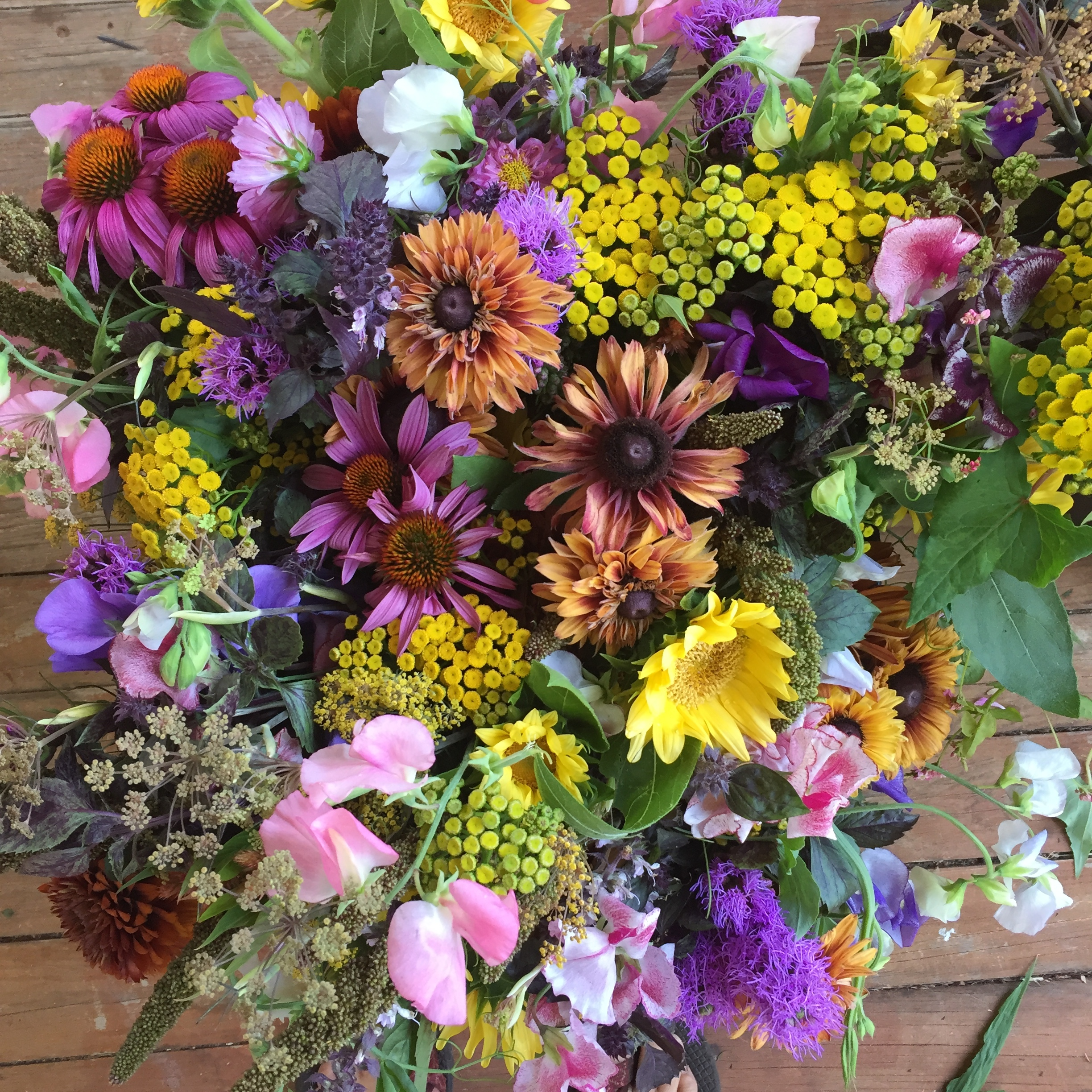 Bucket Share - July thru September - $300  A bountiful floral bucket, delivered Thursday afternoons.   I'll deliver your first bucket and after that please place your used bucket on your porch and I will replace with another filled bucket!