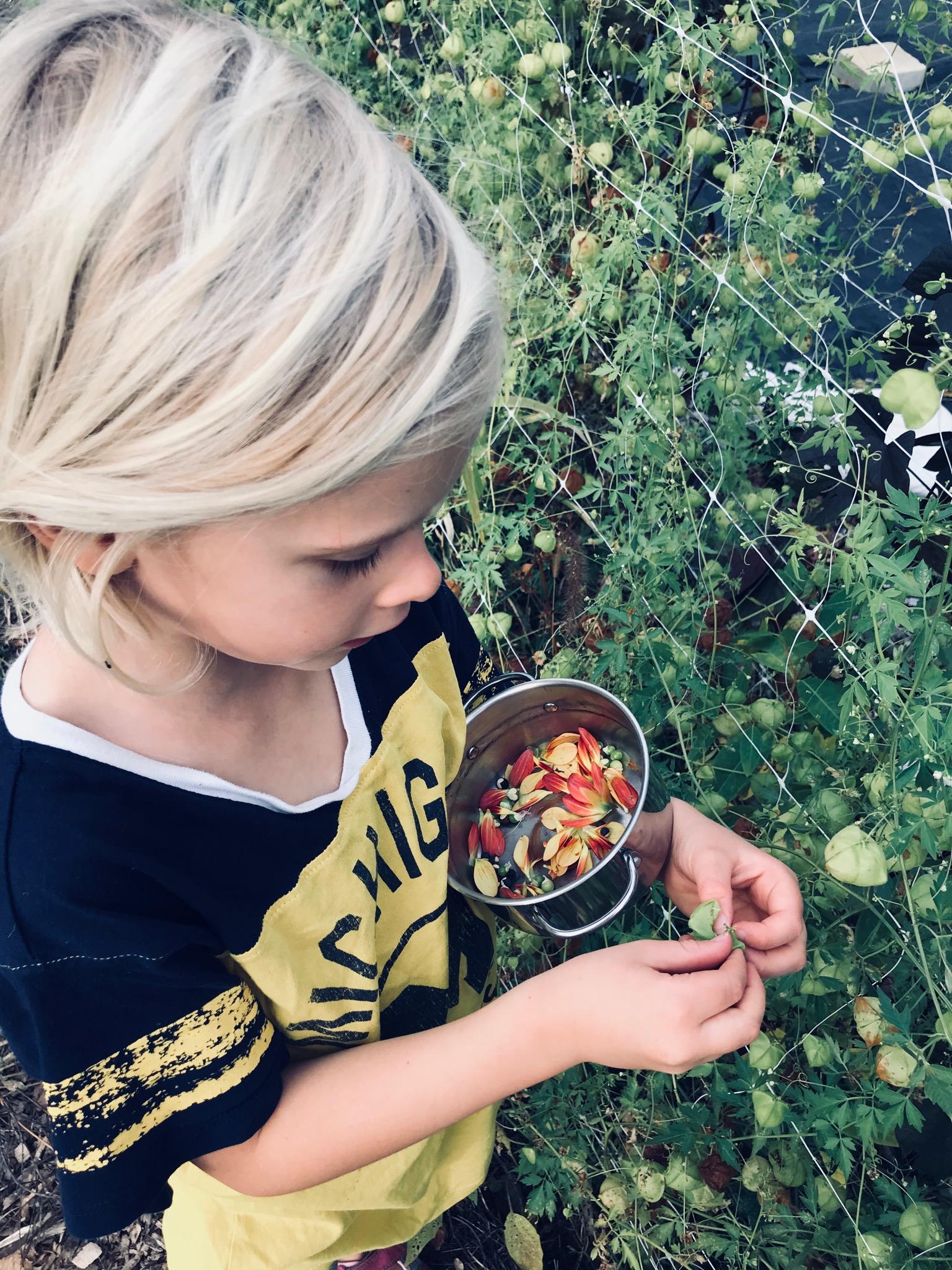 Teagan creating a 'salad'