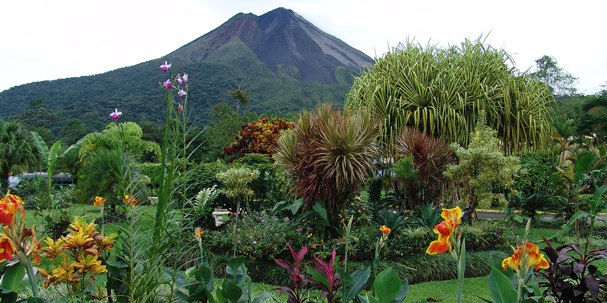Tropical Costa rica - Enjoy a 9 day guided trip to Costa Rica! This trip takes you to the sandy beaches, a Cloud Forest and even to a lodge looking out on the Arenal Volcano.Starting at $1,299/person