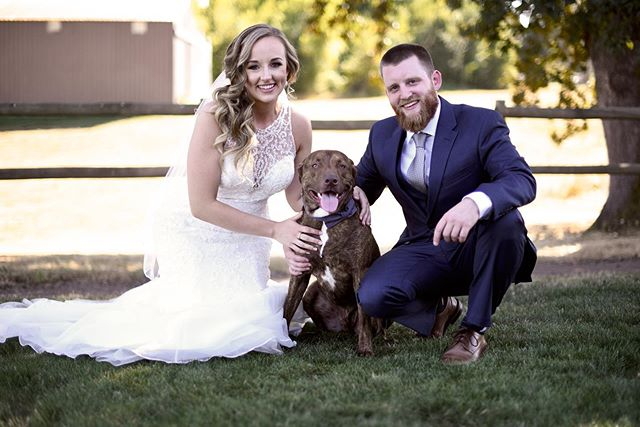 It just so happens that National Dog Day falls on our wedding anniversary, and we wouldn't want it any other way! So grateful for another year with our little family 🐶 #nationaldogday #weddinganniversary