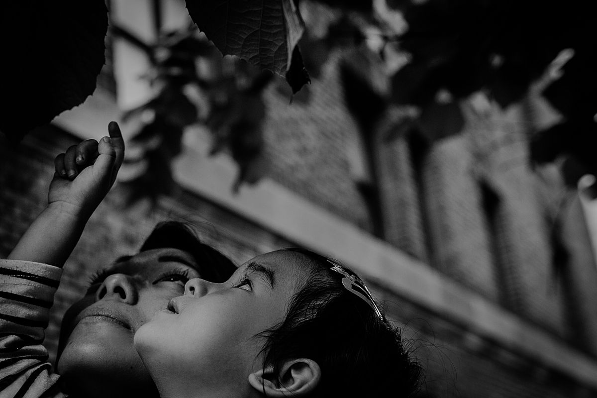 close up of mom and daughter's faces as daughter curiously looks at beautiful tree leaves. Krystil mcdowall photography captures your child's fleeting curiosity in lifestyle sessions