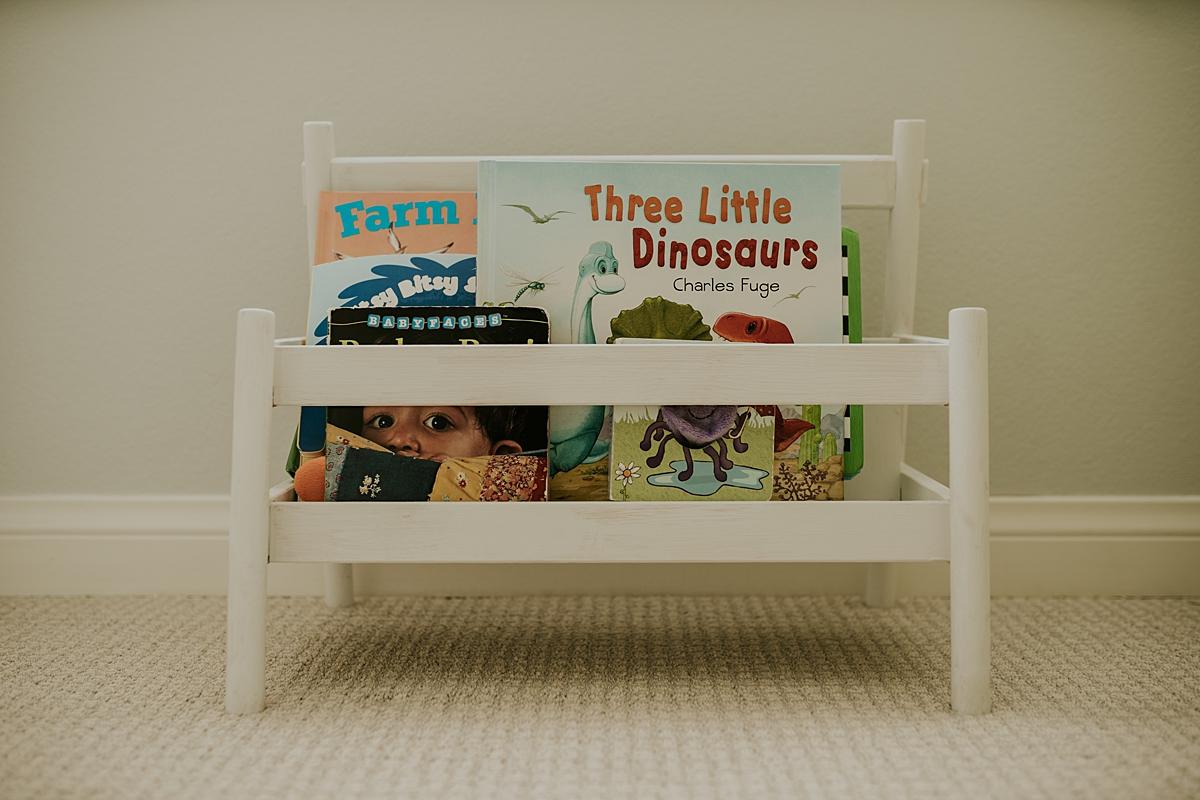 Orange County family photographer. photo of nursery decor namely baby book shelf