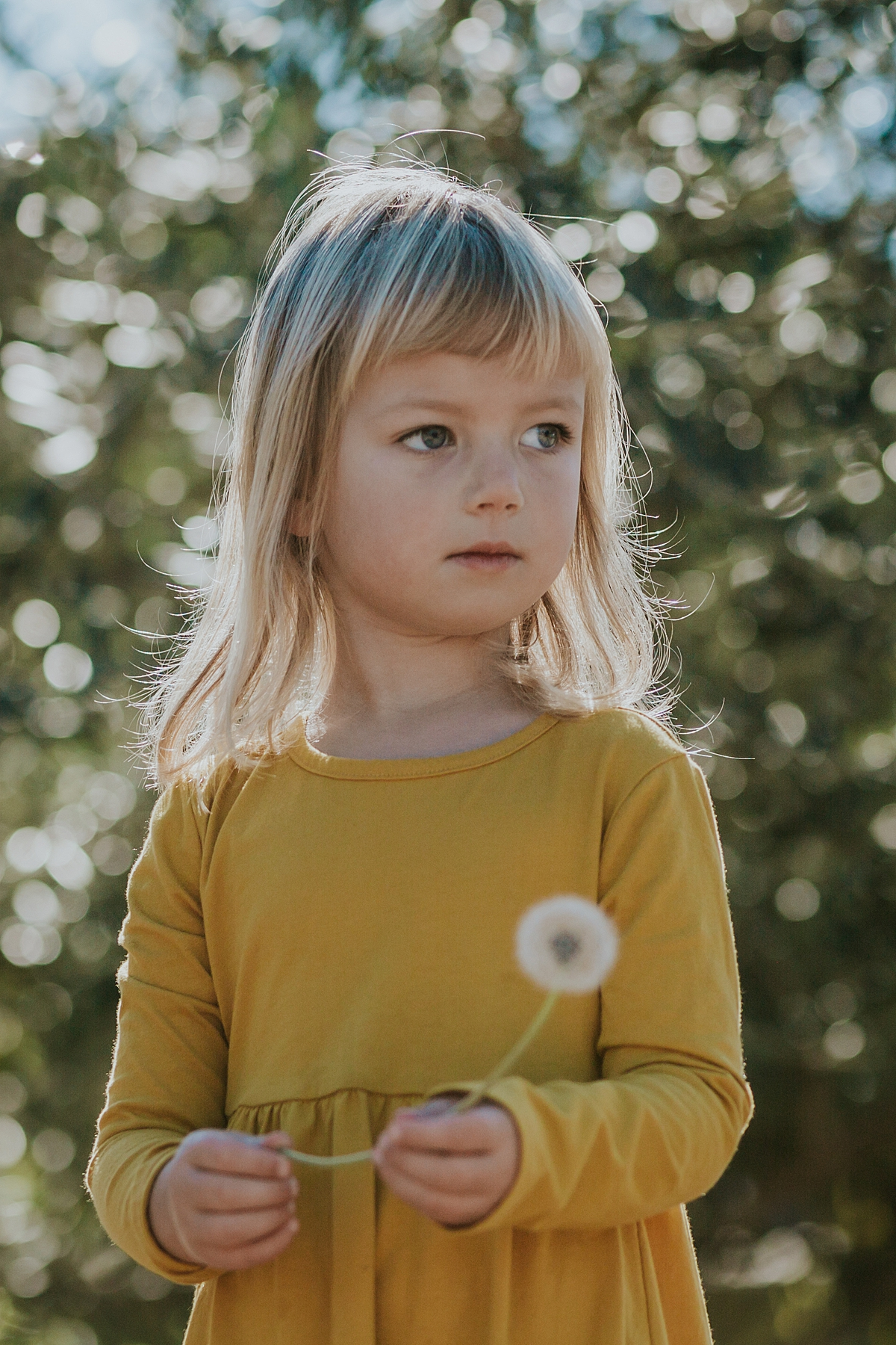 Orange County family photographer. Portrait of daughter in mustard dressing holding a dandelion during in home family photo session in Long Beach, CA