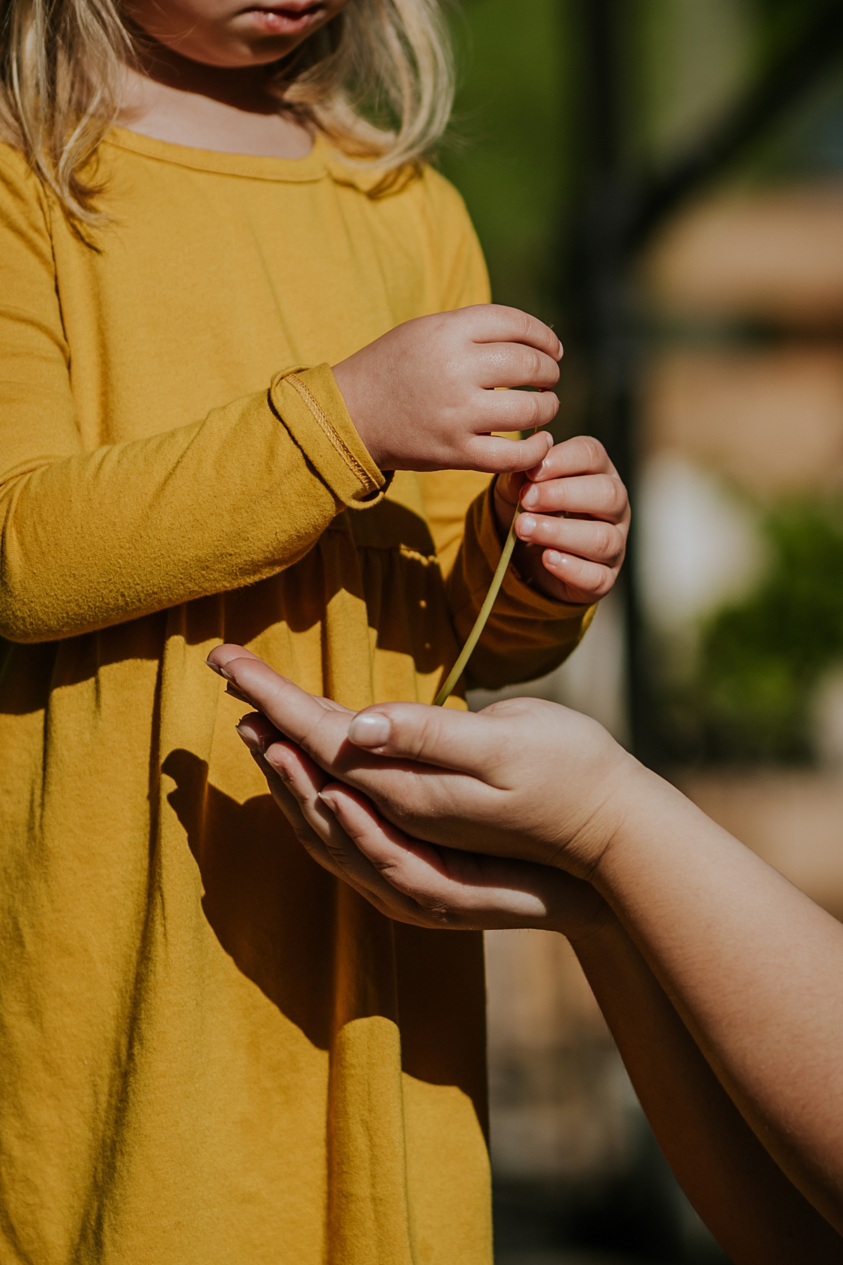 Orange County family photographer. Photo of mom reaching out to daughter for the flowers she is picking during in home family photo session in Long Beach, CA