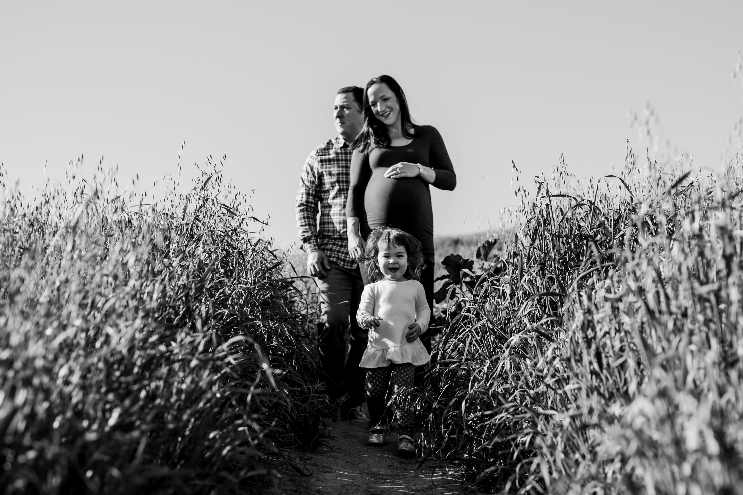 Orange County family photographer. Photo of family of three standing among the long bright green grass during maternity photo shoot at Quail Hill Irvine