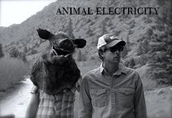 AnimalElectricity_WEB.jpg