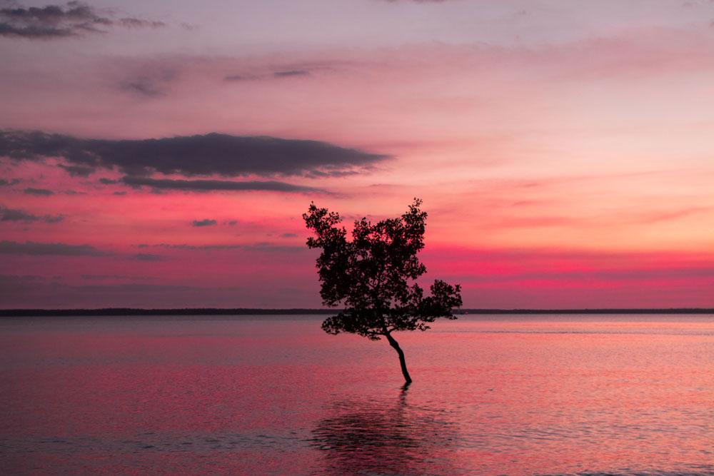 Darwin-Harbour_2.jpg