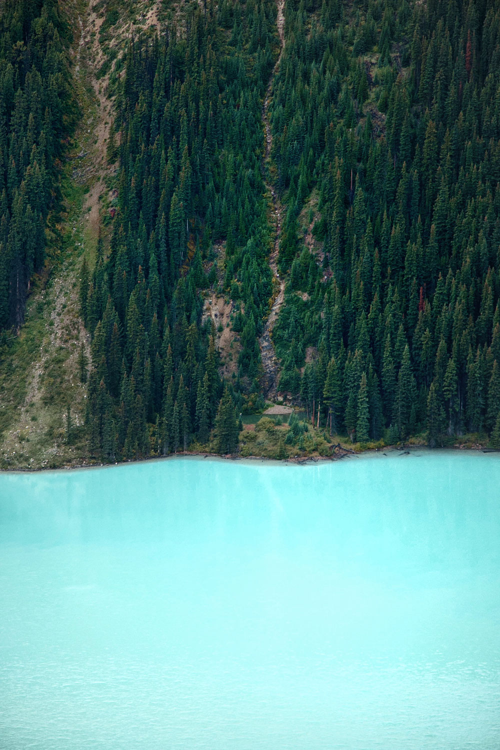How to get to Peyto Lake in Canada