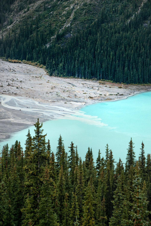 Visit Peyto Lake Canada