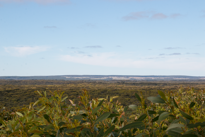 The view of Kangaroo Island from the lodge