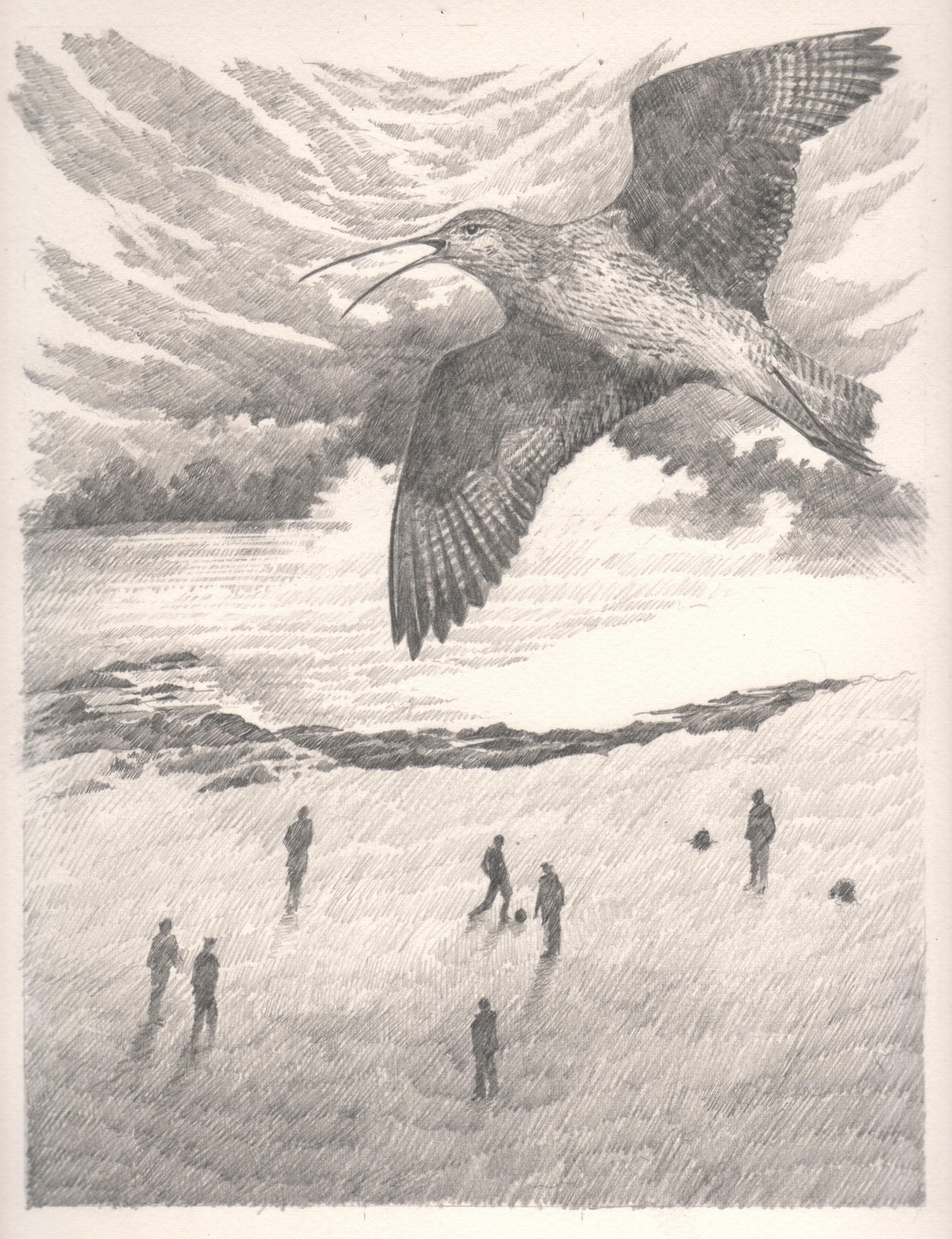Rathadh An Iseainn (The Bird's Road)