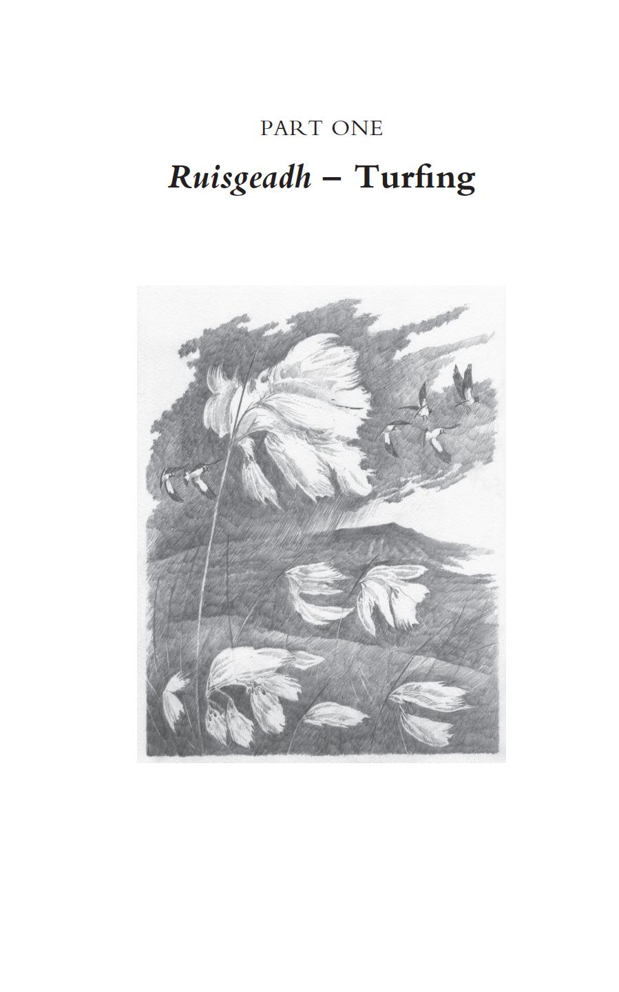 turfing final book.jpg