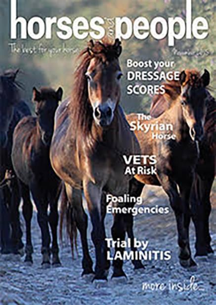 horse hacking pic copy.jpg