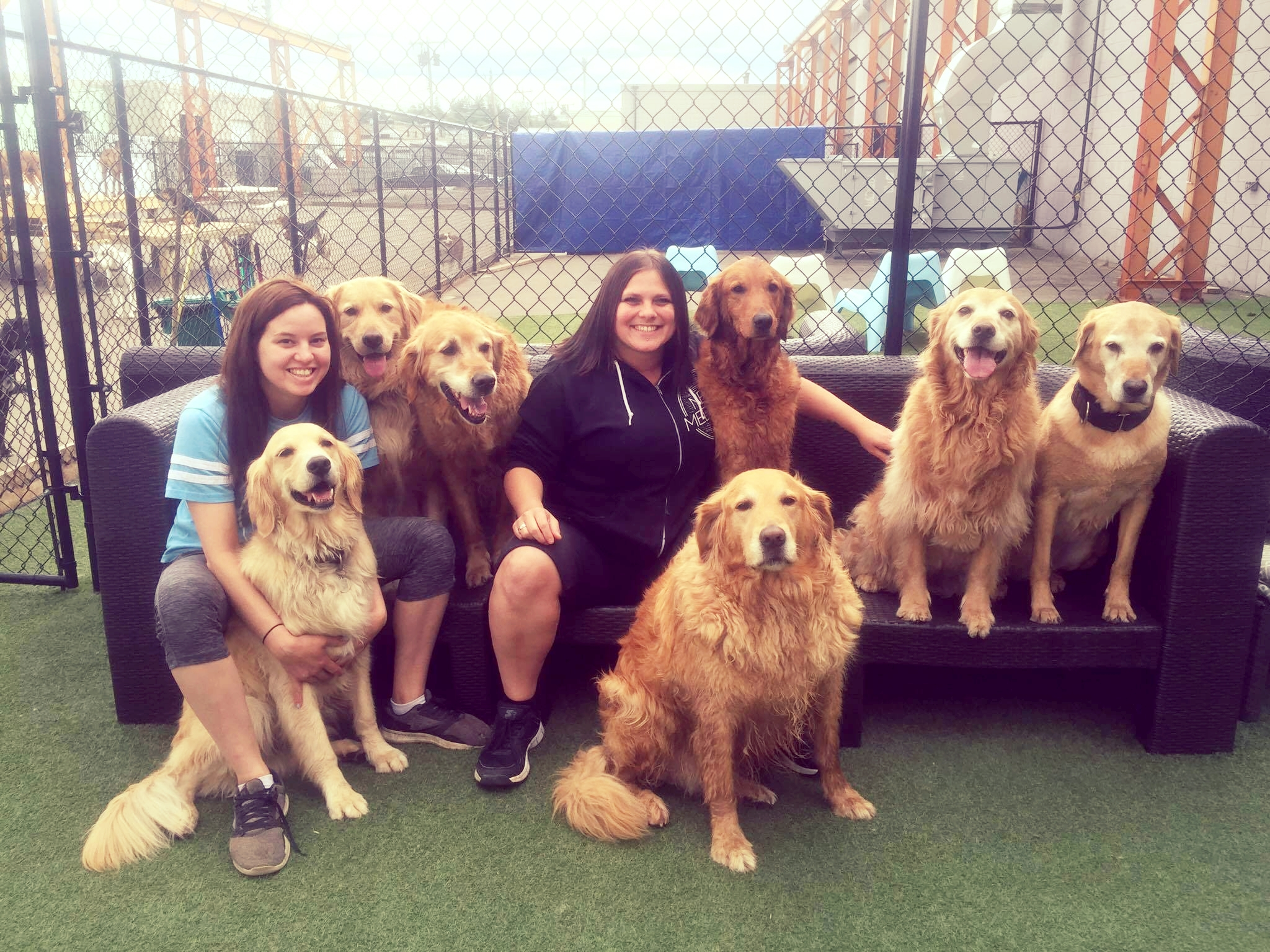 Manager Amanda and Senior Team Lead Ashlea with the Goldens! Summer 2016