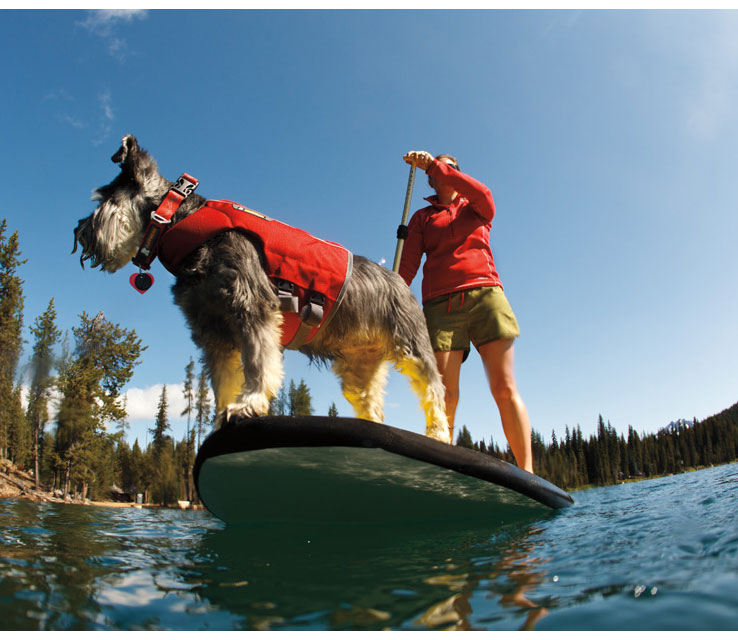 Life Jackets, Backpacks - for that active Rover - Ruffwear & RCPETs!