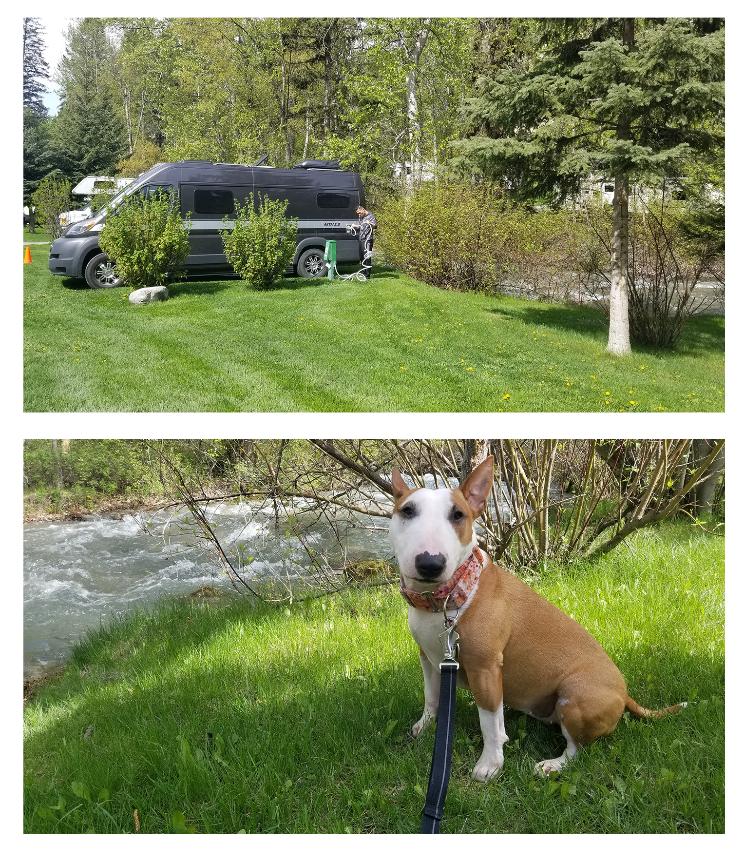 Canyon RV in Radium - Site #12