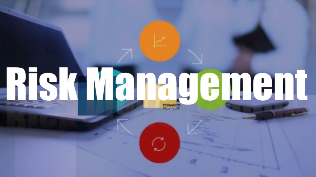 Risk Management for Project Professionals