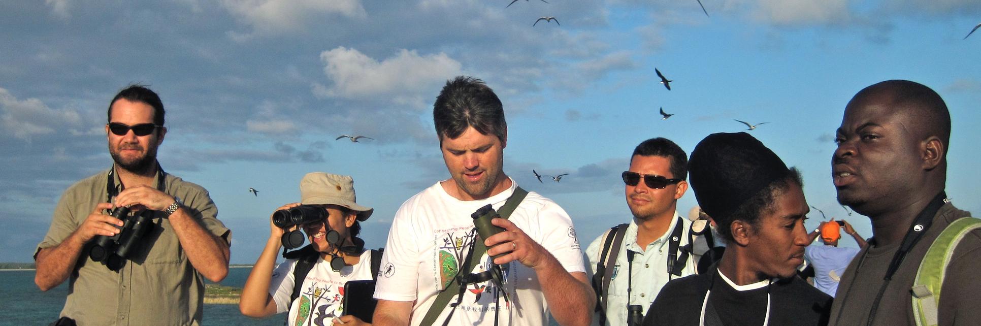 Monitoring seabirds with birdscaribbean, san salvador, bahamas