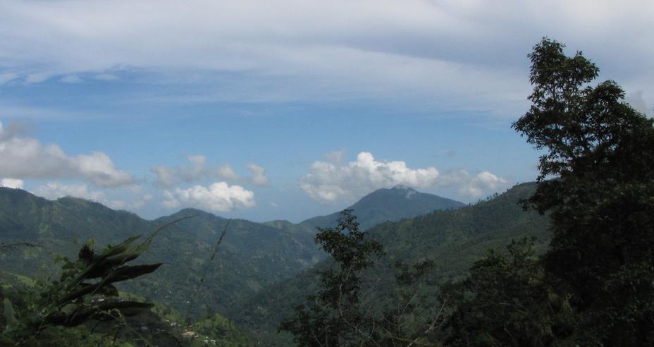 Blue mountains from harwar gap