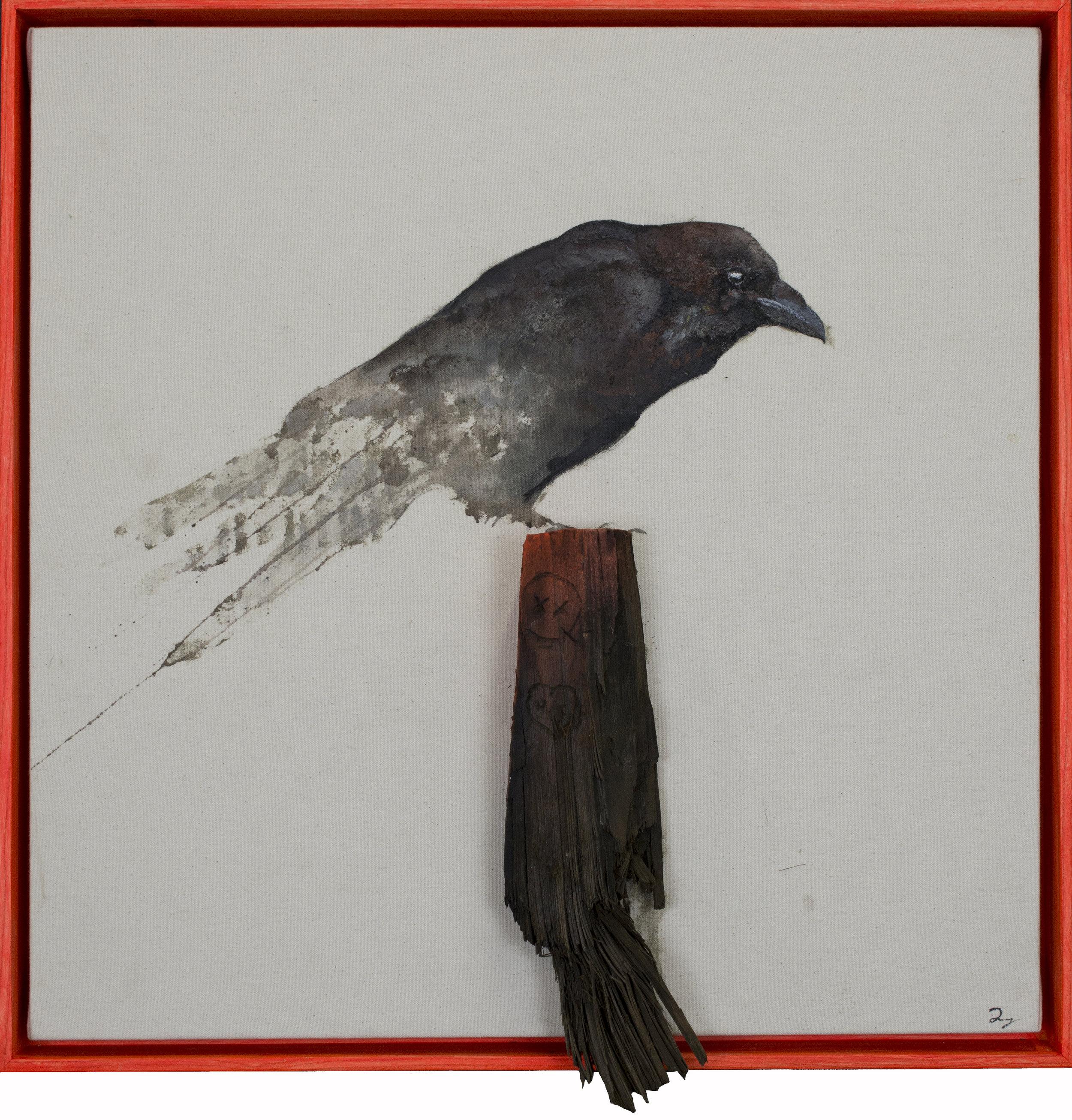 Earth Bird, Crow