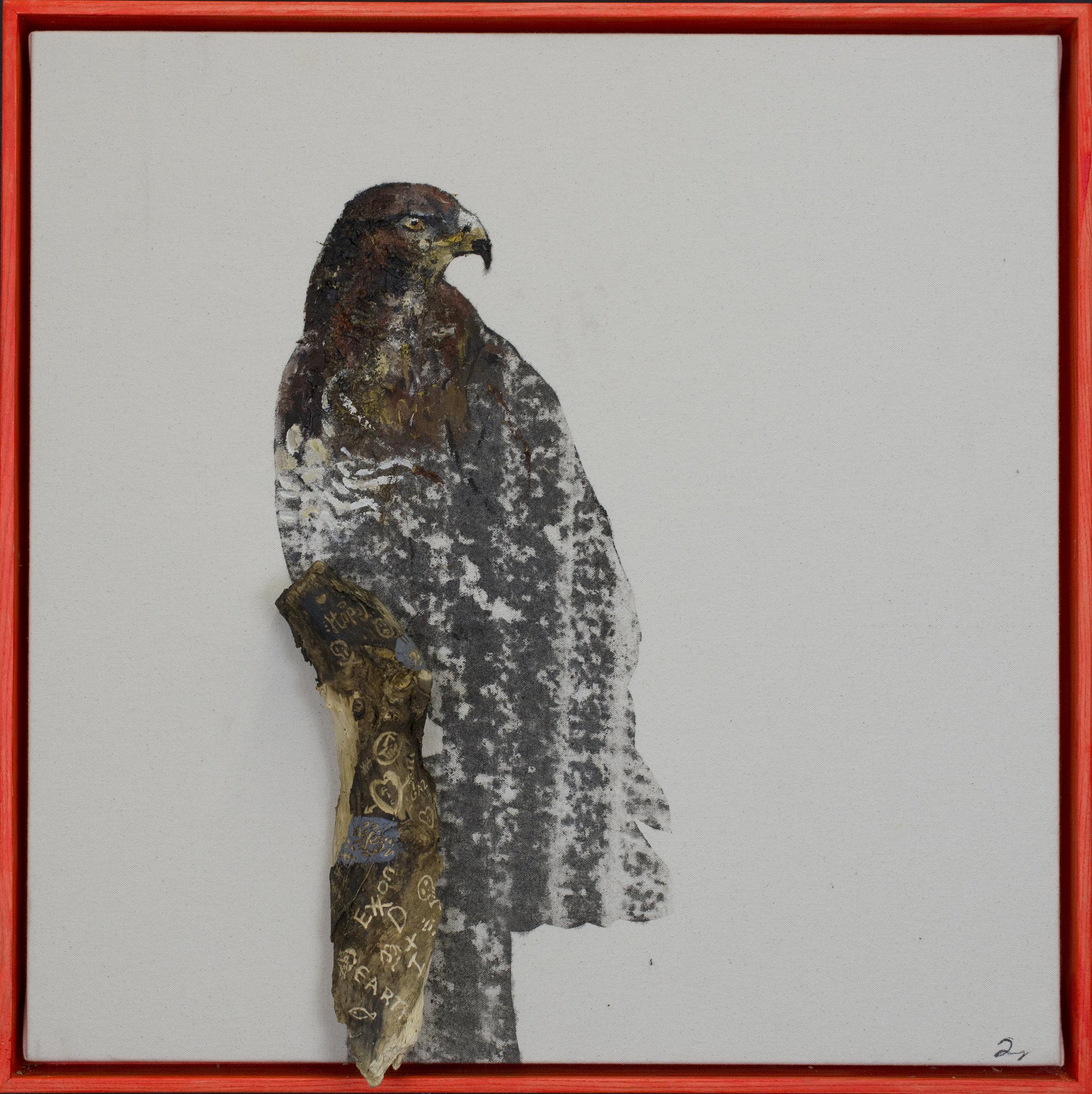 Earth Birds, Red Hawk