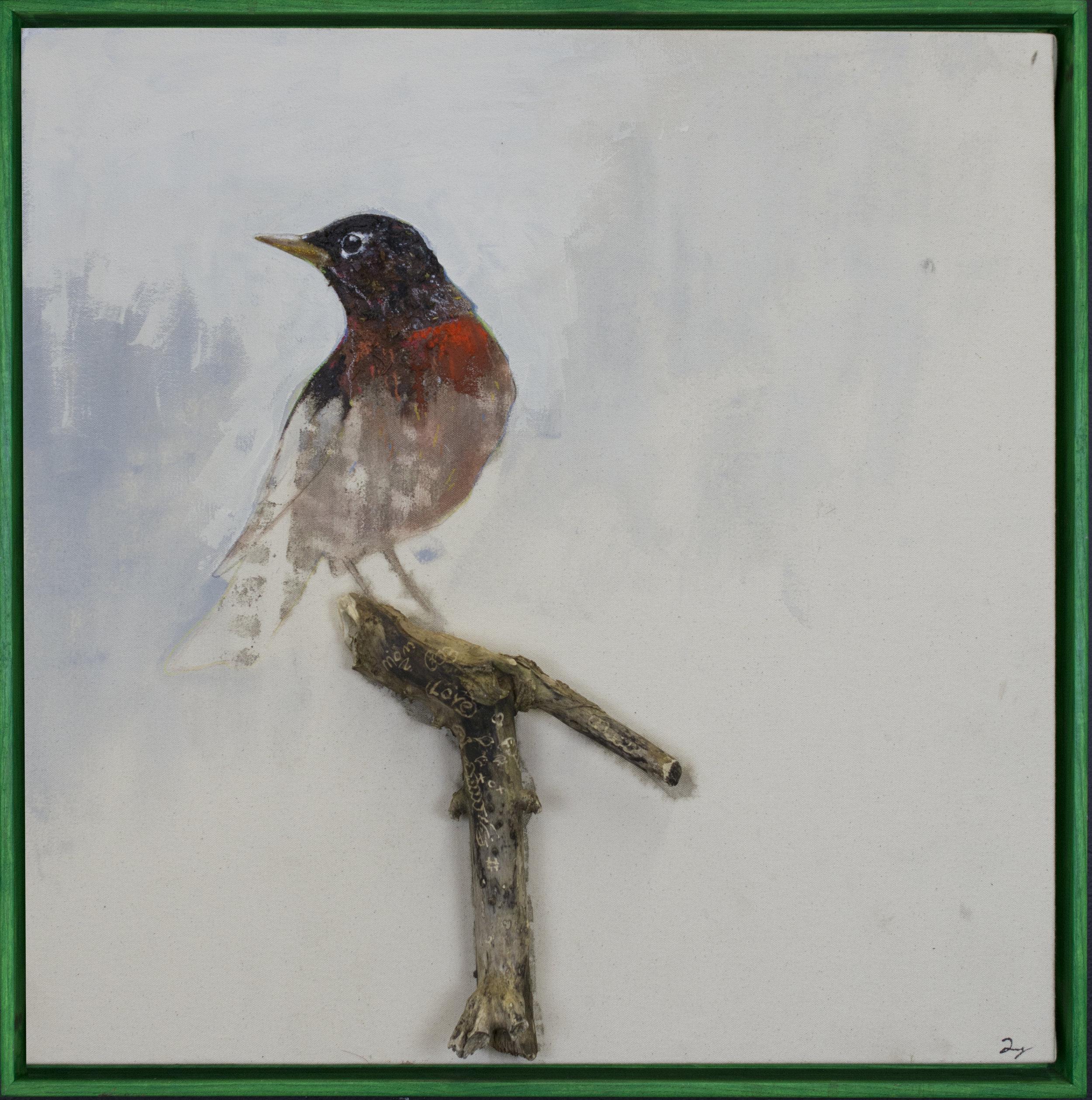 Earth Birds, Robin