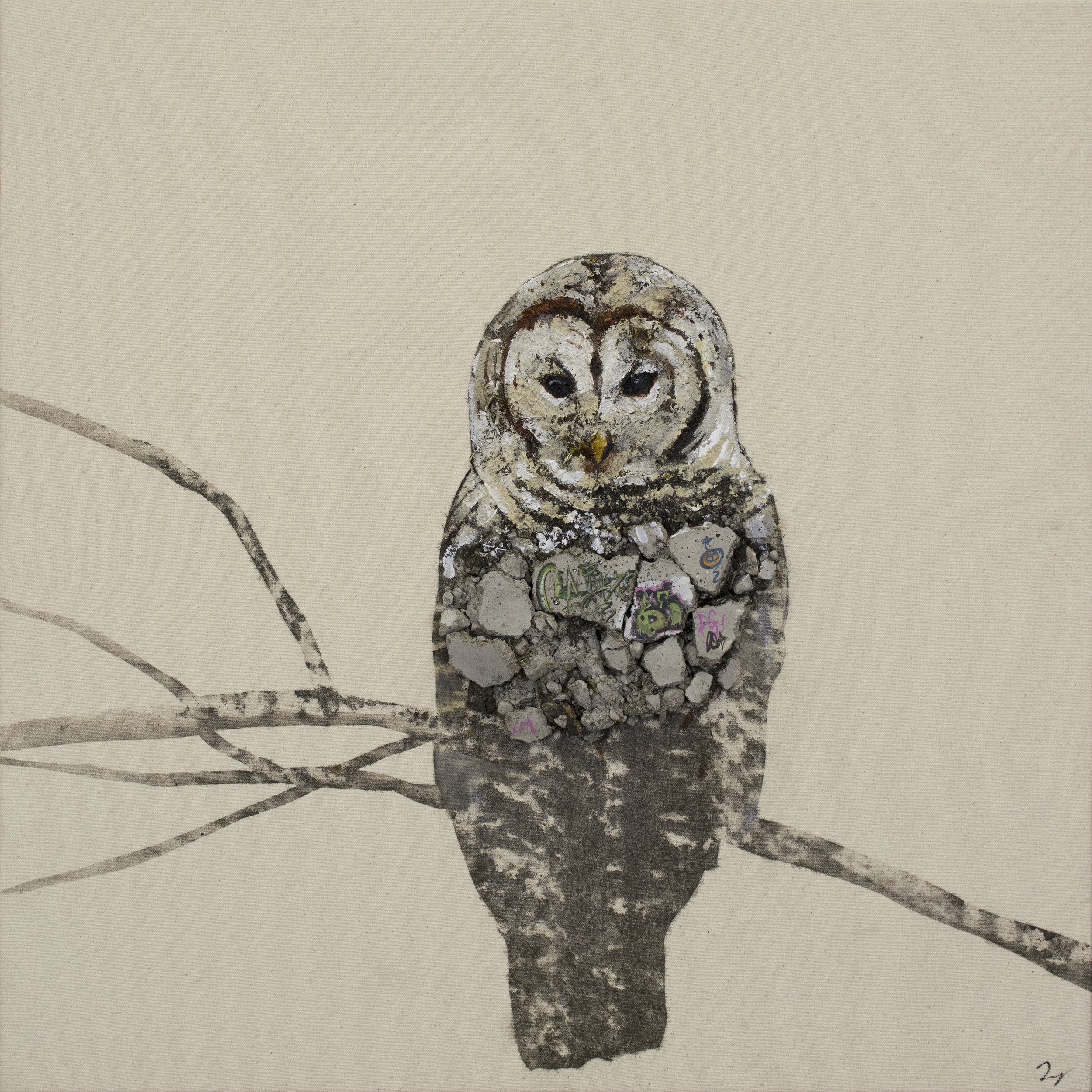 Concrete Jungle, Barn owl