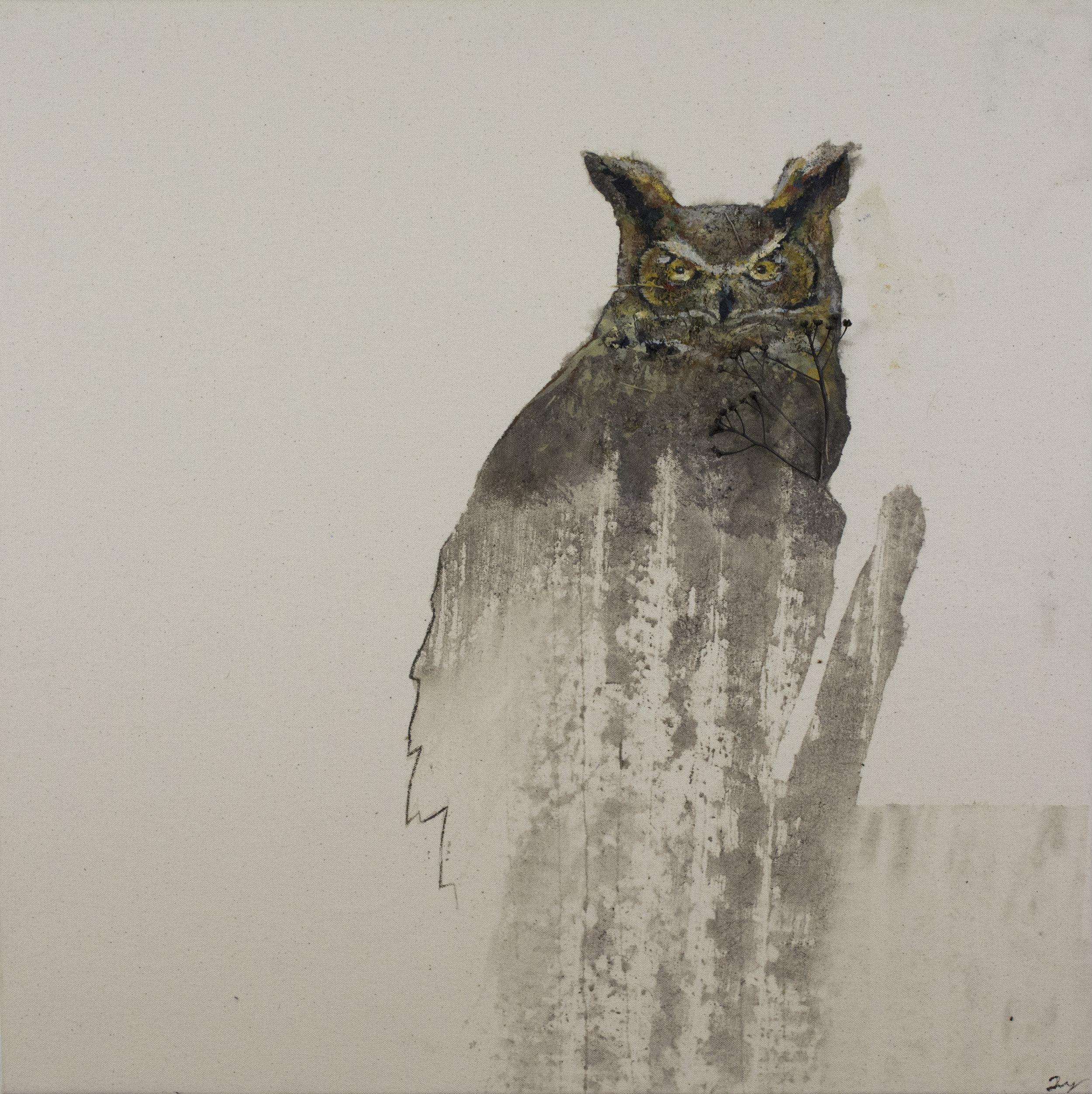 Earth Birds, Great Horned Owl