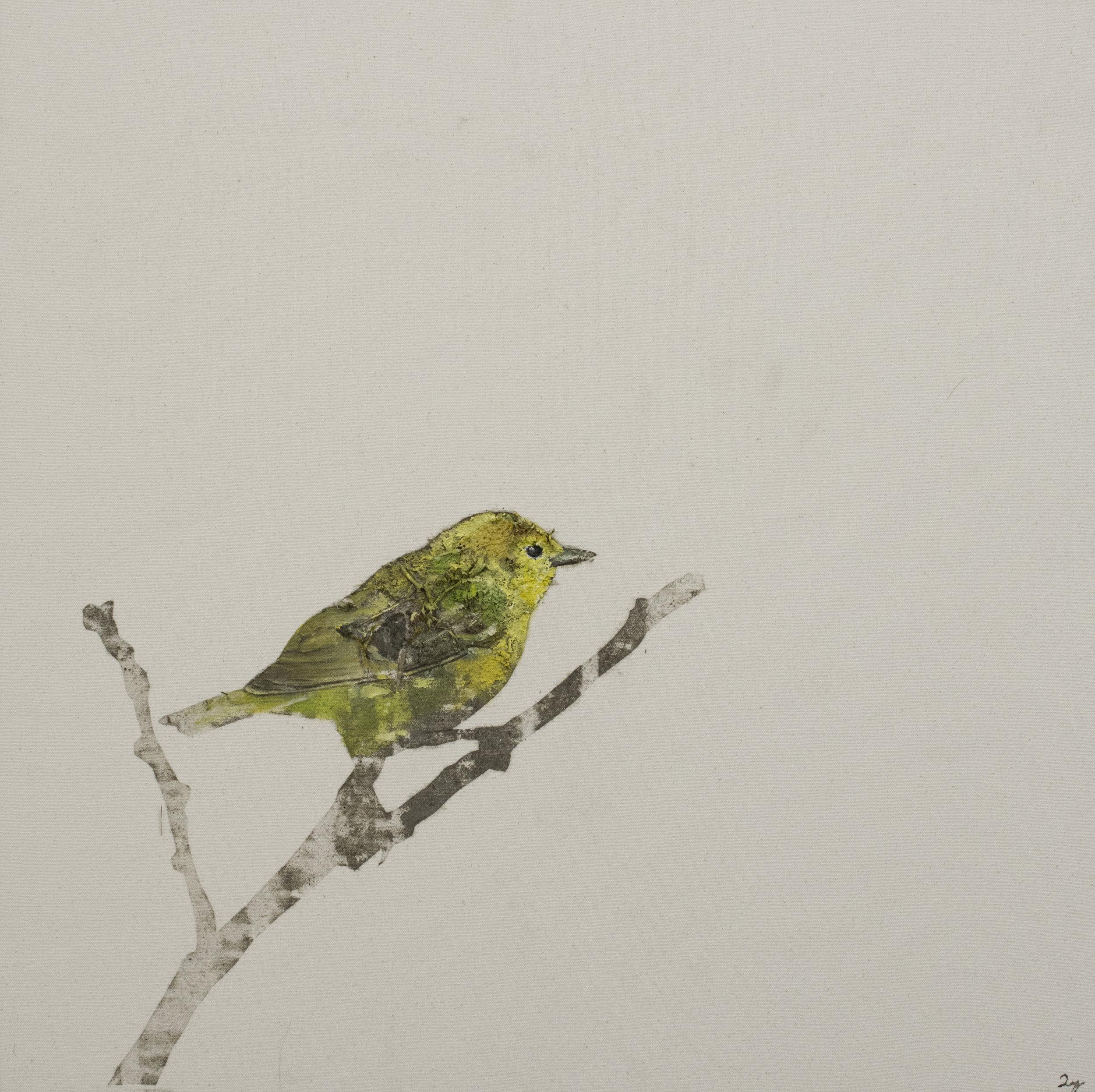Earth Birds, Yellow Chickadee