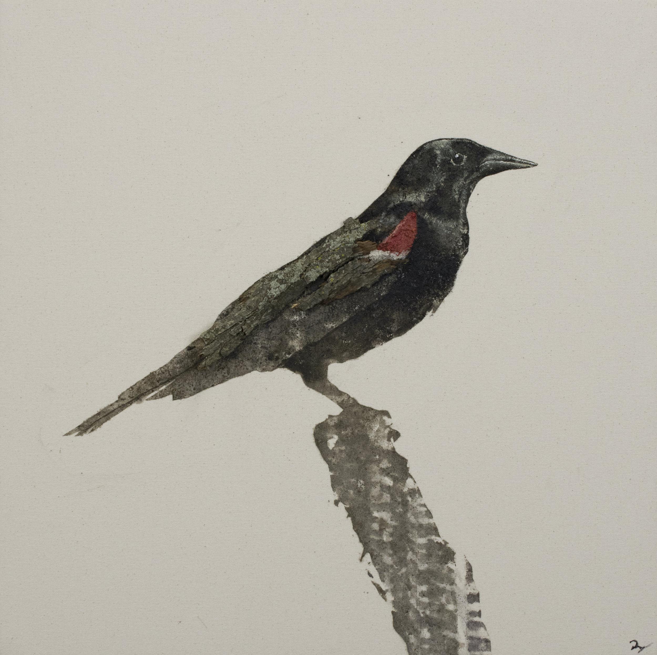 Earth Birds, Red Wing Blackbird