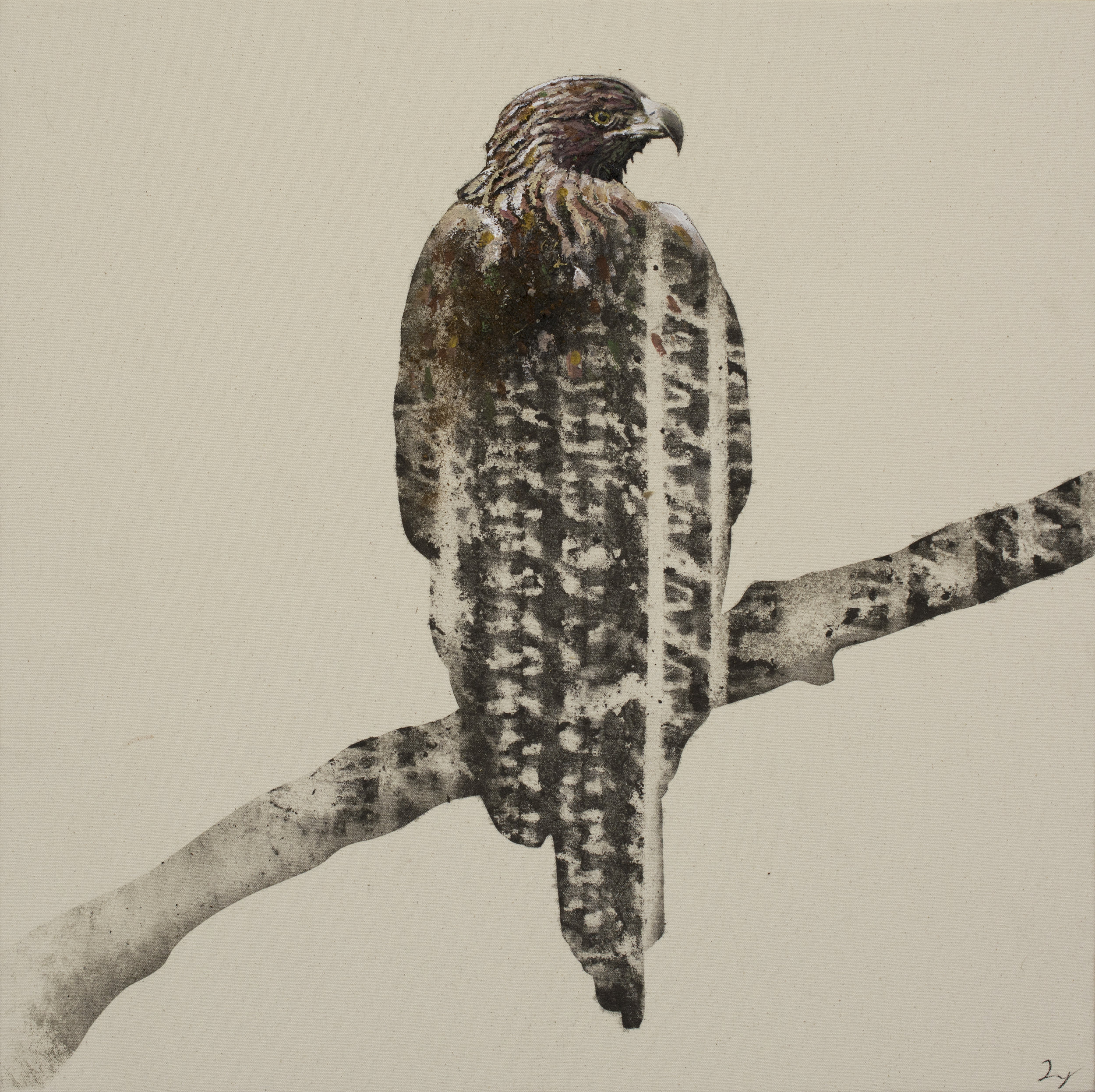 Earth Bird, Eagle