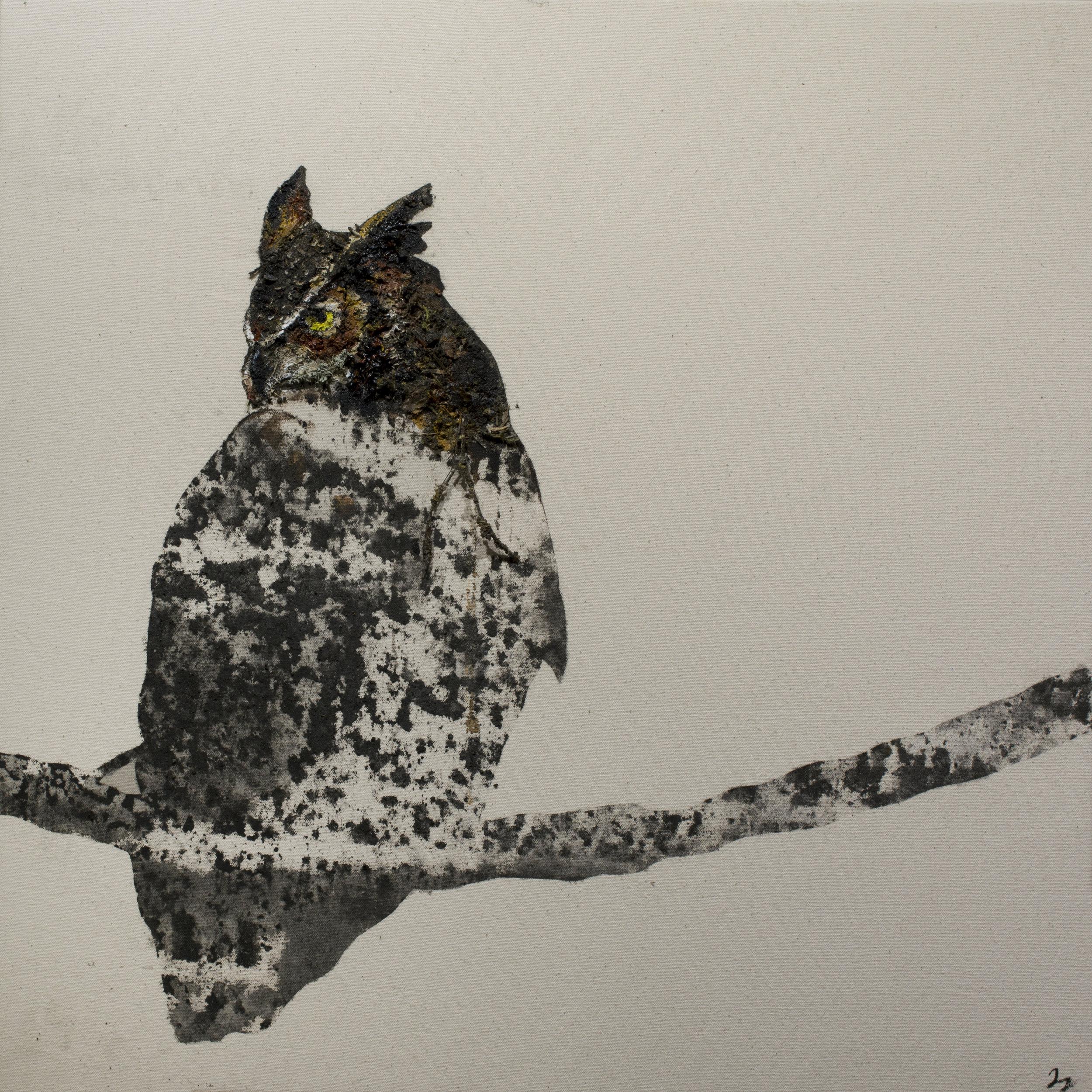 Earth Bird, Great Horned Owl