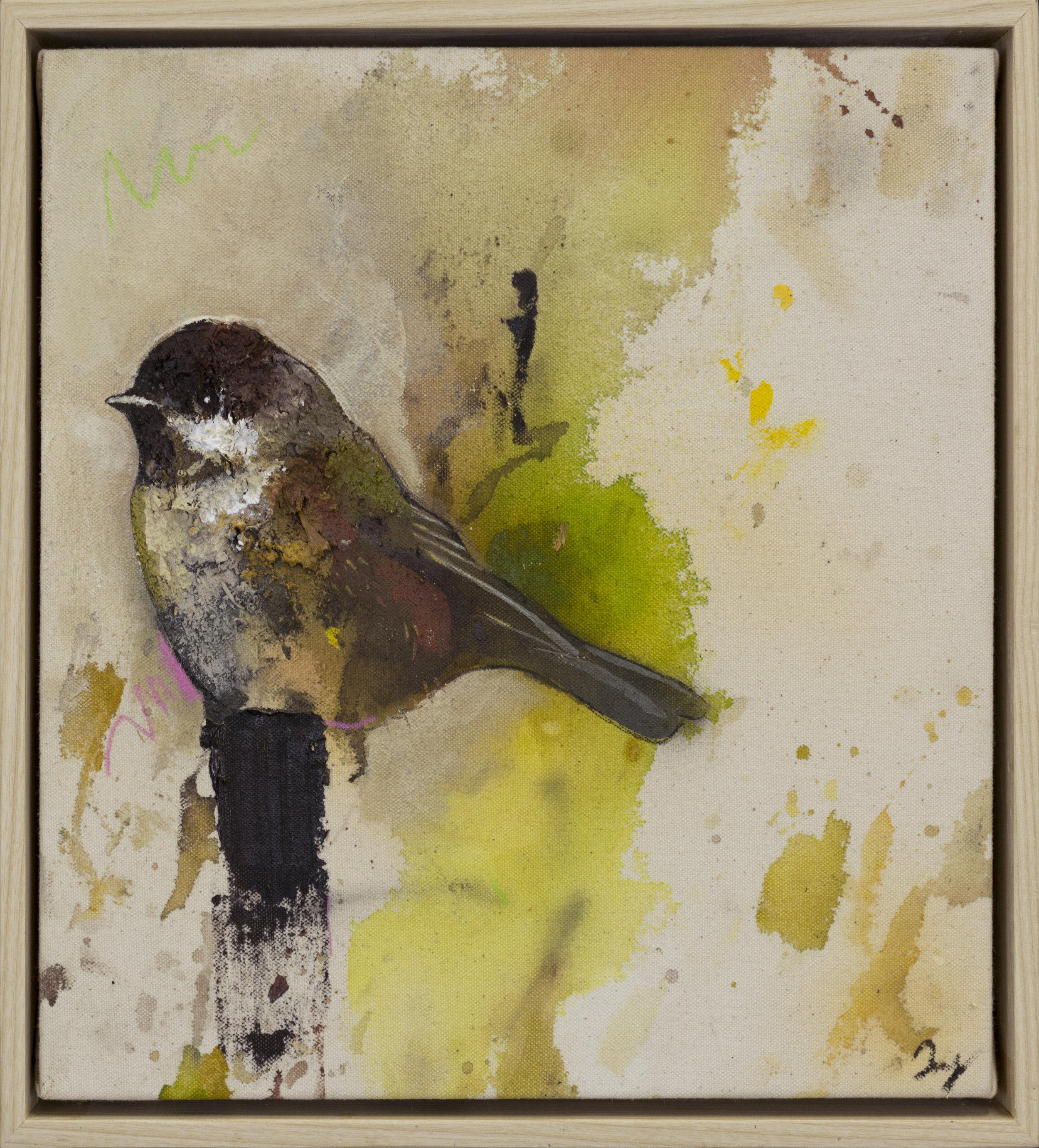 Drop Cloth Bird 4