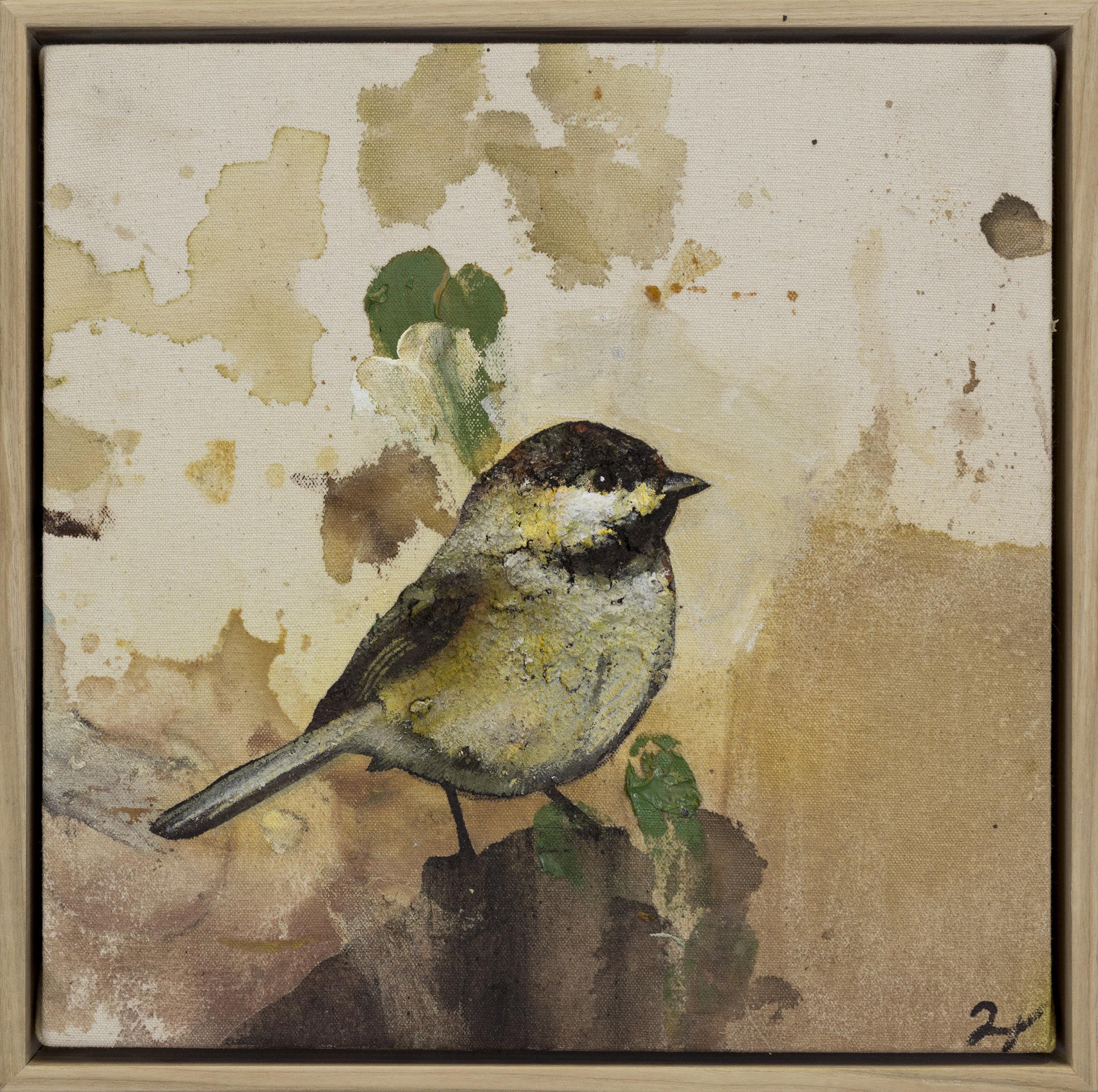 Drop Cloth Bird 12