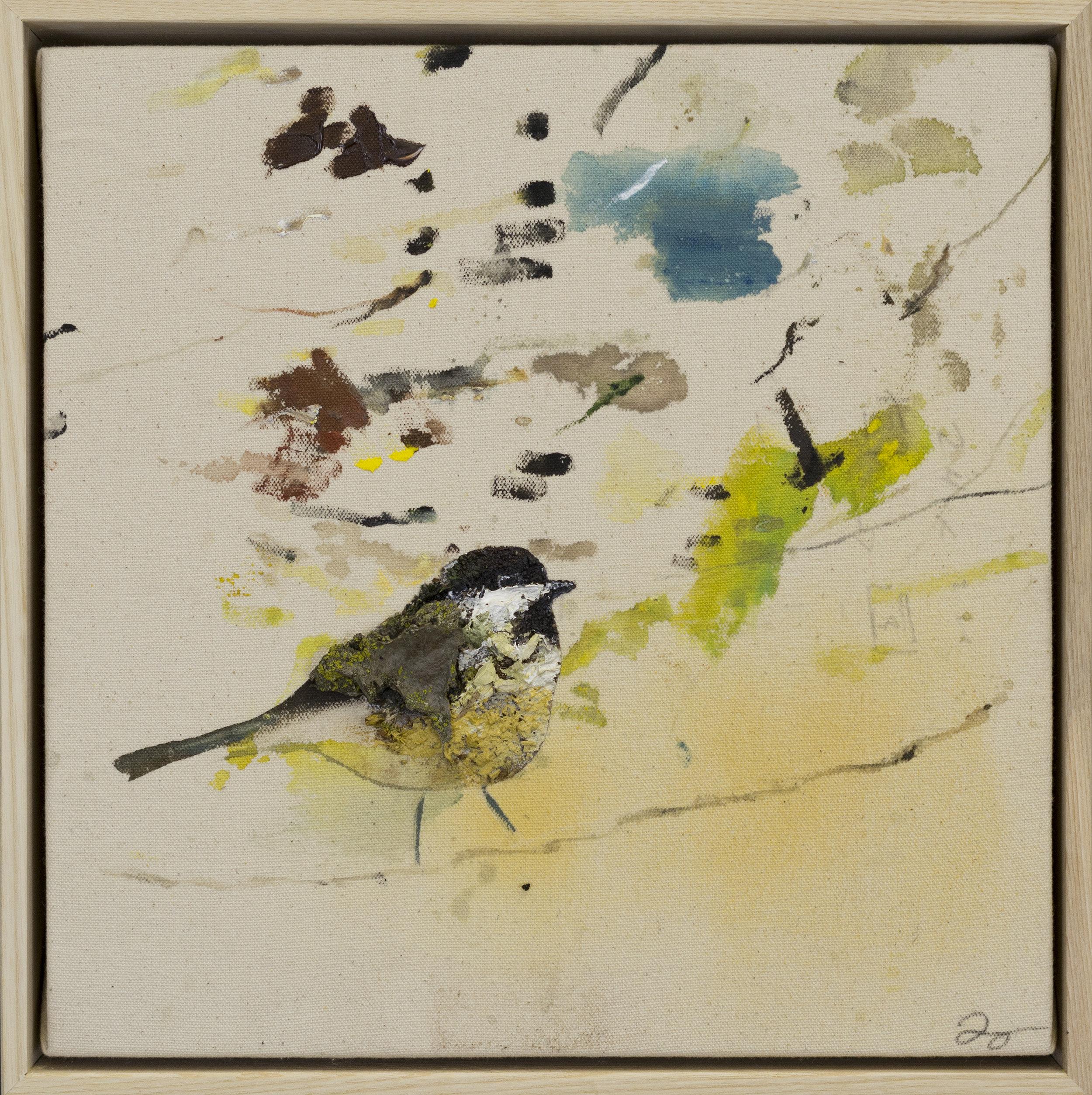Drop cloth bird # 14