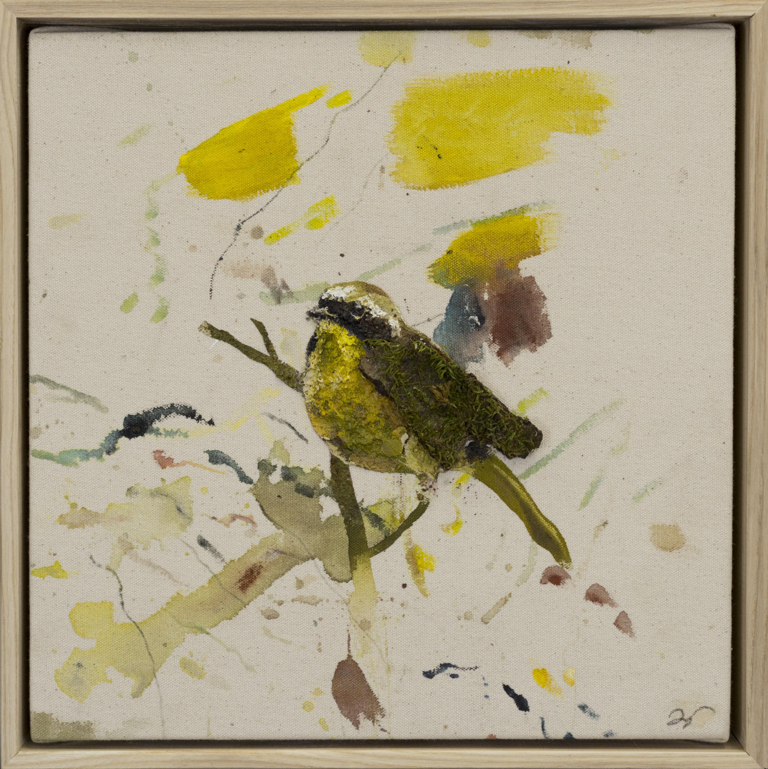 Drop cloth bird # 17