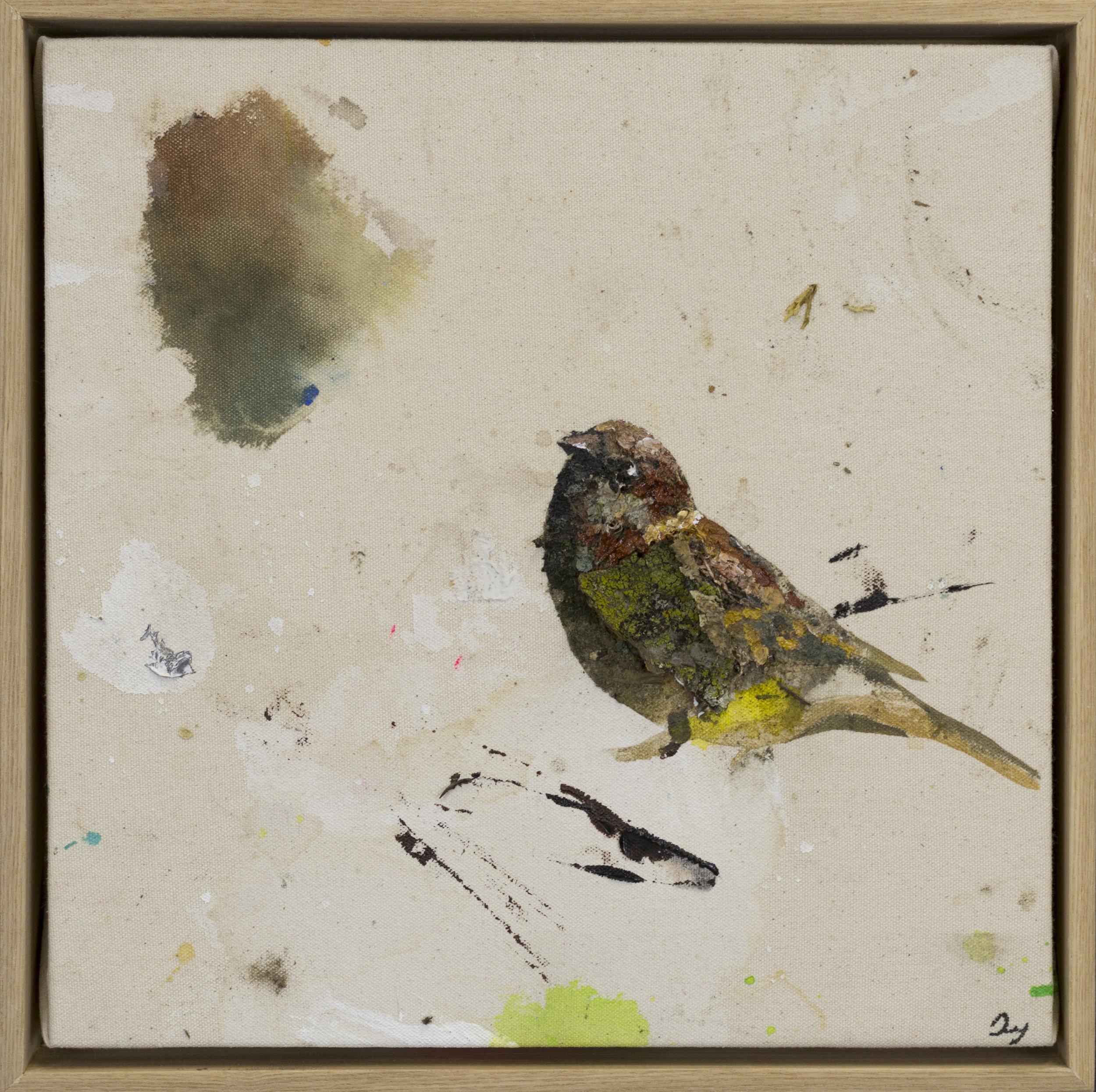 Drop cloth bird # 19