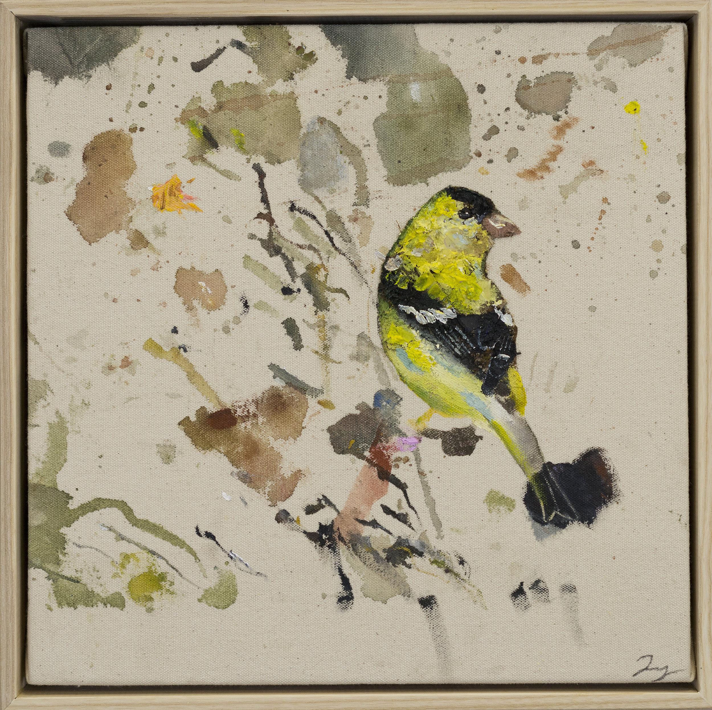 Drop cloth bird # 21