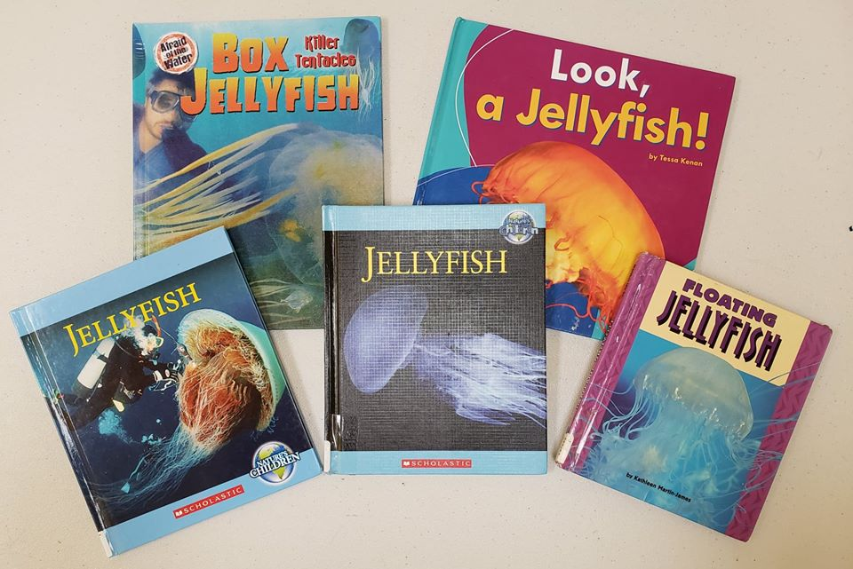 Jellyfish Books.jpg