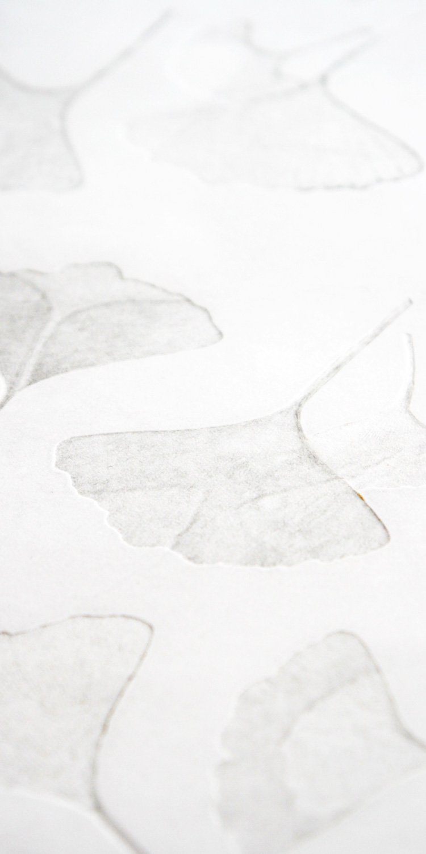 Monotype Print   Title:  Fallen Ginko  Medium:  Ginko Leaves, Ink, & Stonehenge  Year:  2016