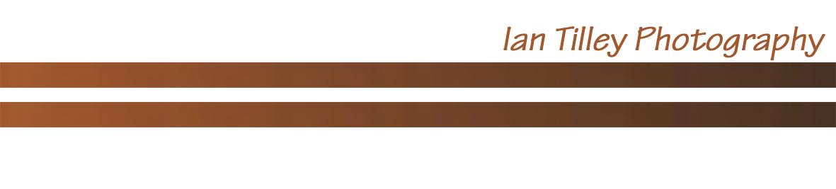 ITP logo.jpg