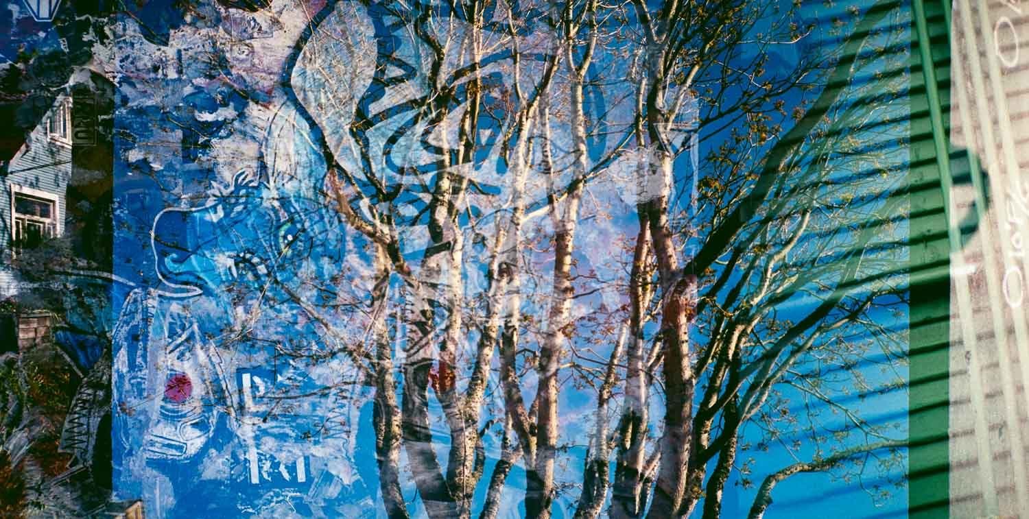 Double exposure of a tree and street art, taken with the Olympus XA film camera