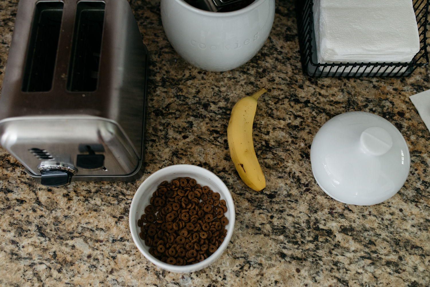 Dog Food and Banana on Kitchen Counter Orlando Documentary Photographer.jpg