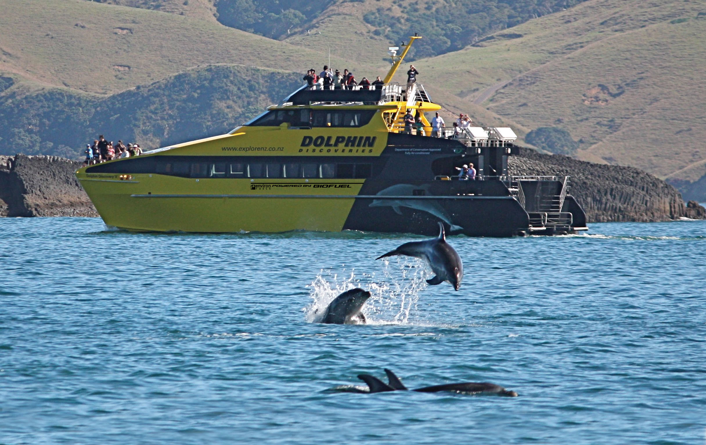Discover-the-Bay-hole-in-the-rock-cruise.jpg