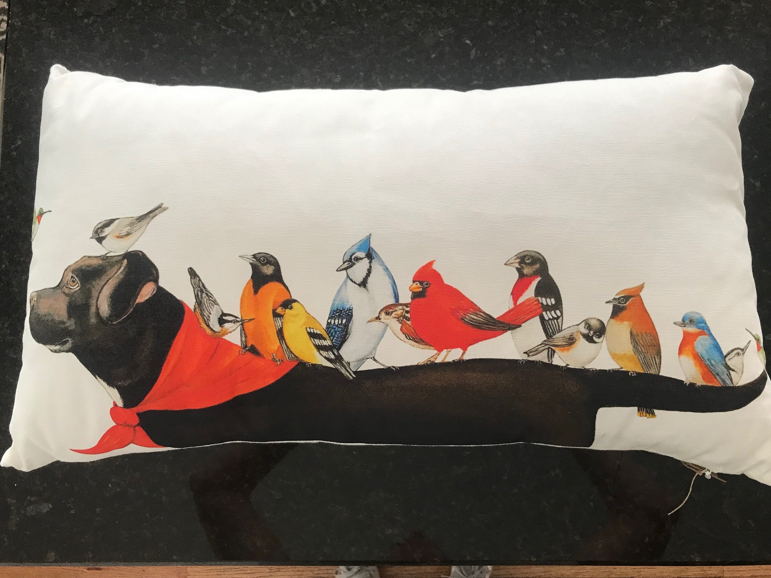 LABRADOR & BIRD PILLOW   Animal lovers will adore this 22x11 stuffed pillow with an acrylic on canvas painting of a labrador with his bird friends.  DONOR: Emily Austin VALUE: $40