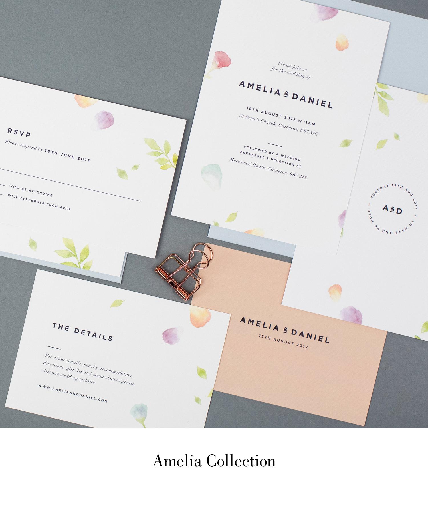Amelia Collection.jpg