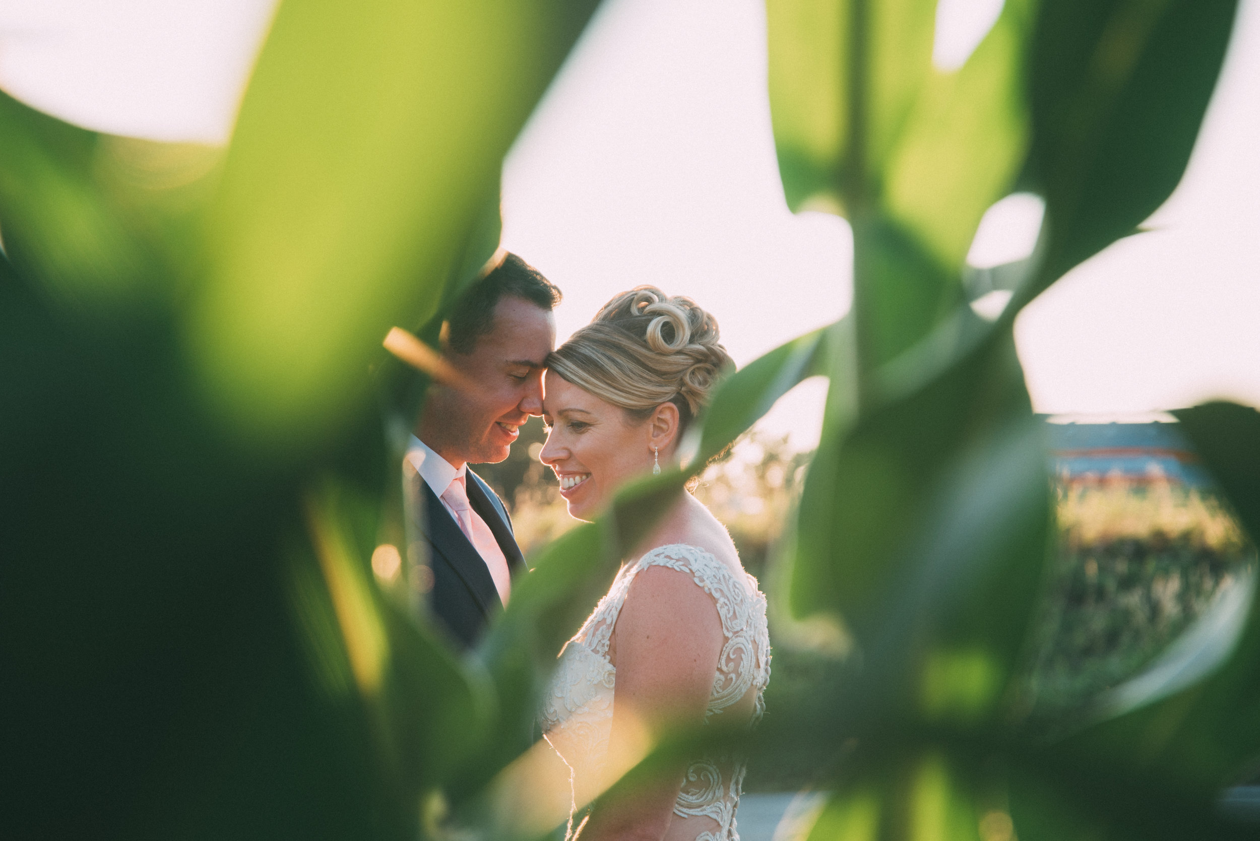 Milton backyard wedding with soundslikeyellowphotography